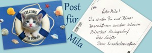 Milas Post